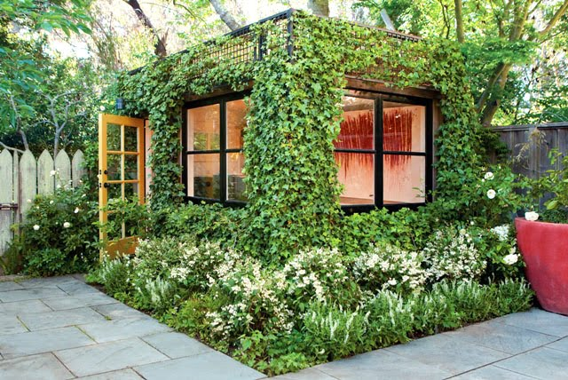 Cómo refrescar la casa sin aire acondicionado fácilmente: UTILIZA ESTRATÉGICAMENTE LAS PLANTAS