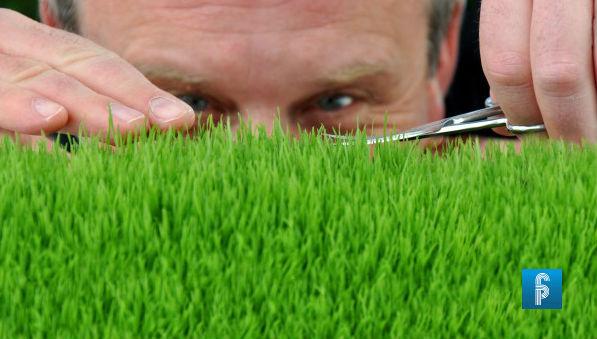grass_garden_green_man_pedant_scissors