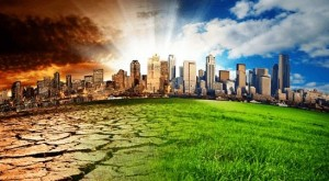 Cómo evitar el calentamiento global   10 cosas concretas que puedes hacer